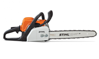 CroppedImage350210-Stihl-Home-MS-170.png